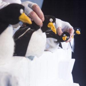 Alles Pinguin, oder was?